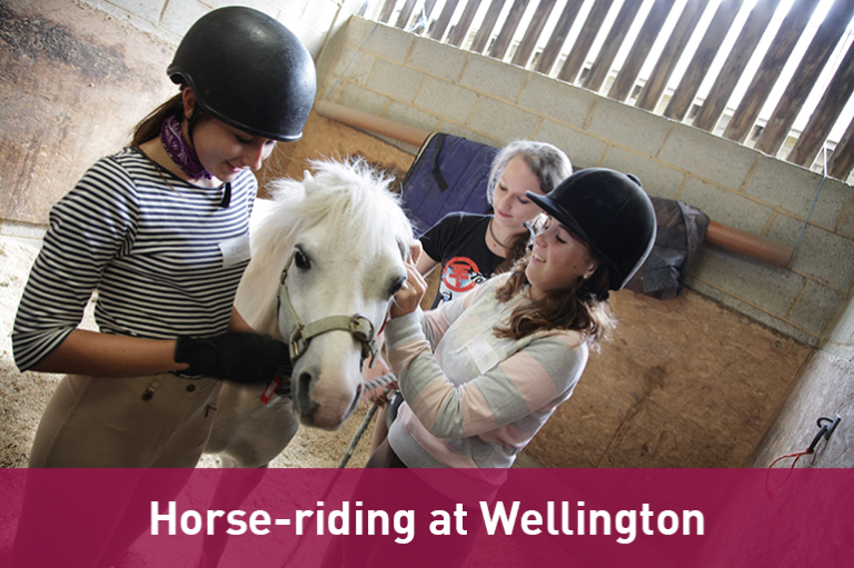 Horse riding academy at Wellington College