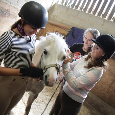 Horse-riding Academy at Wellington College